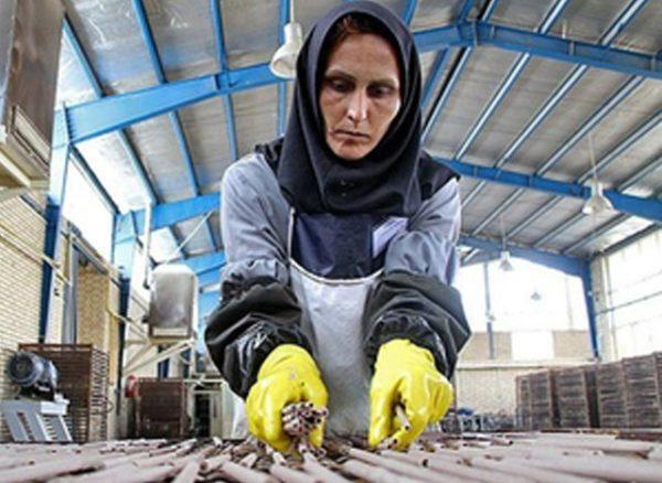 بیش از یک میلیون زن از بازار کار رانده شدند